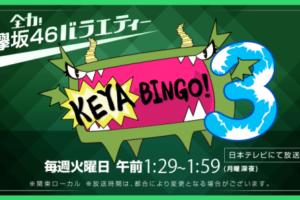 全力!欅坂46バラエティーKEYABINGO!の無料視聴方法